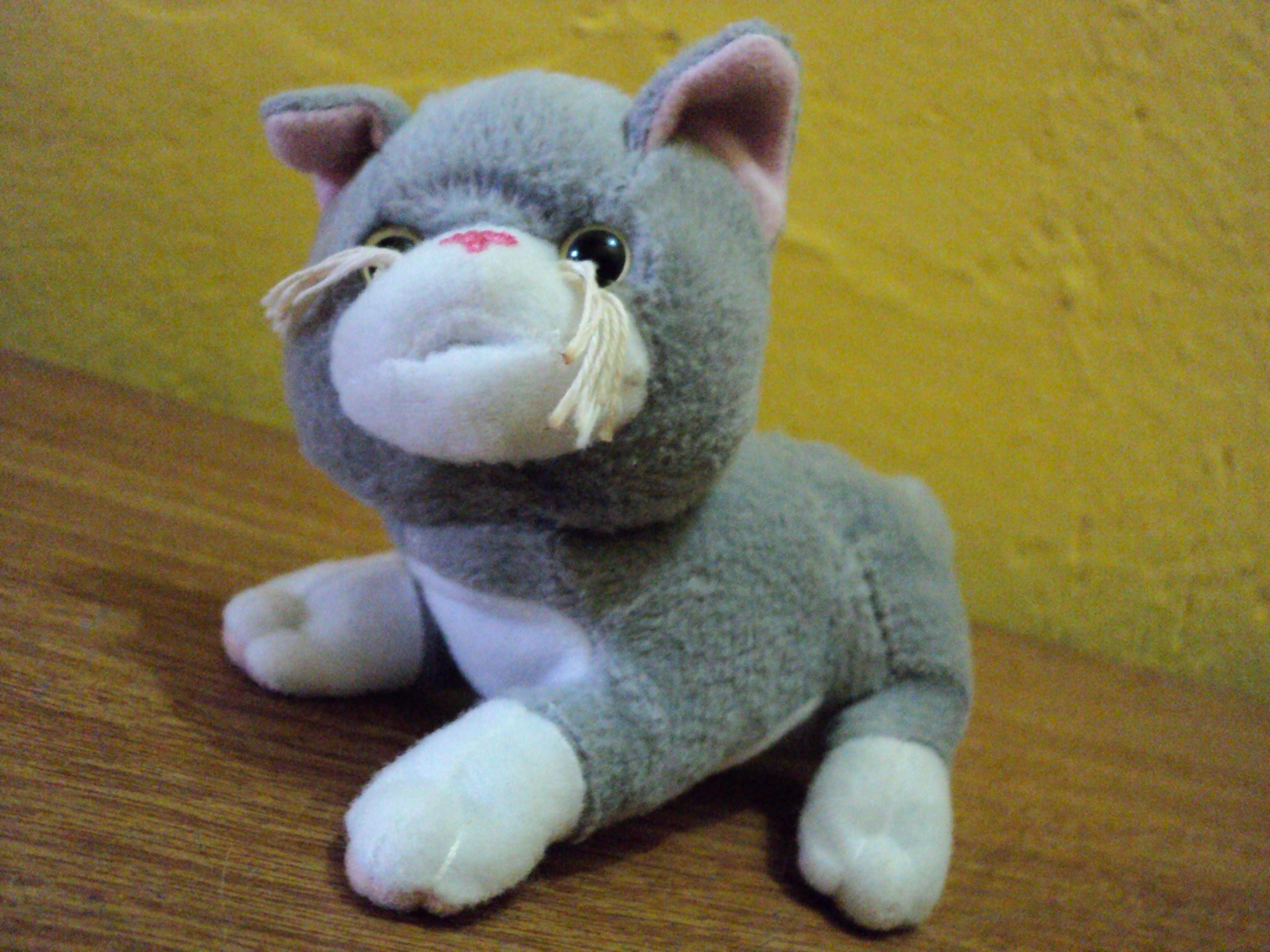 Free photograph; plush, cat, cute, toy