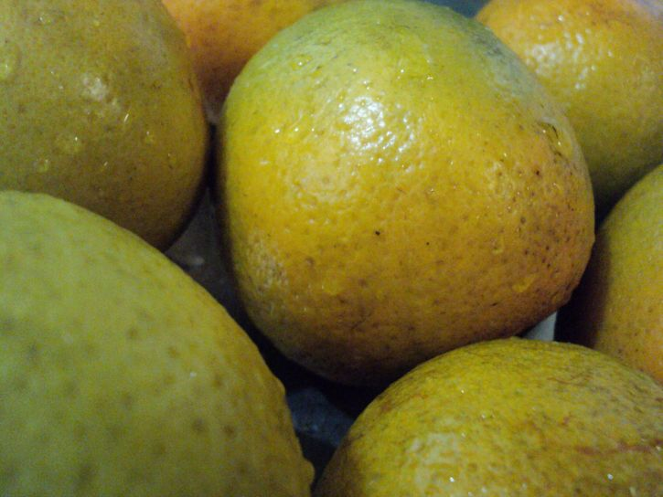 oranges, close, fruit, plants, organic, food