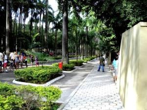 quinta, Vista, park