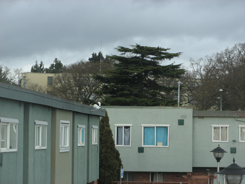 Free photograph; housing, complex, windows