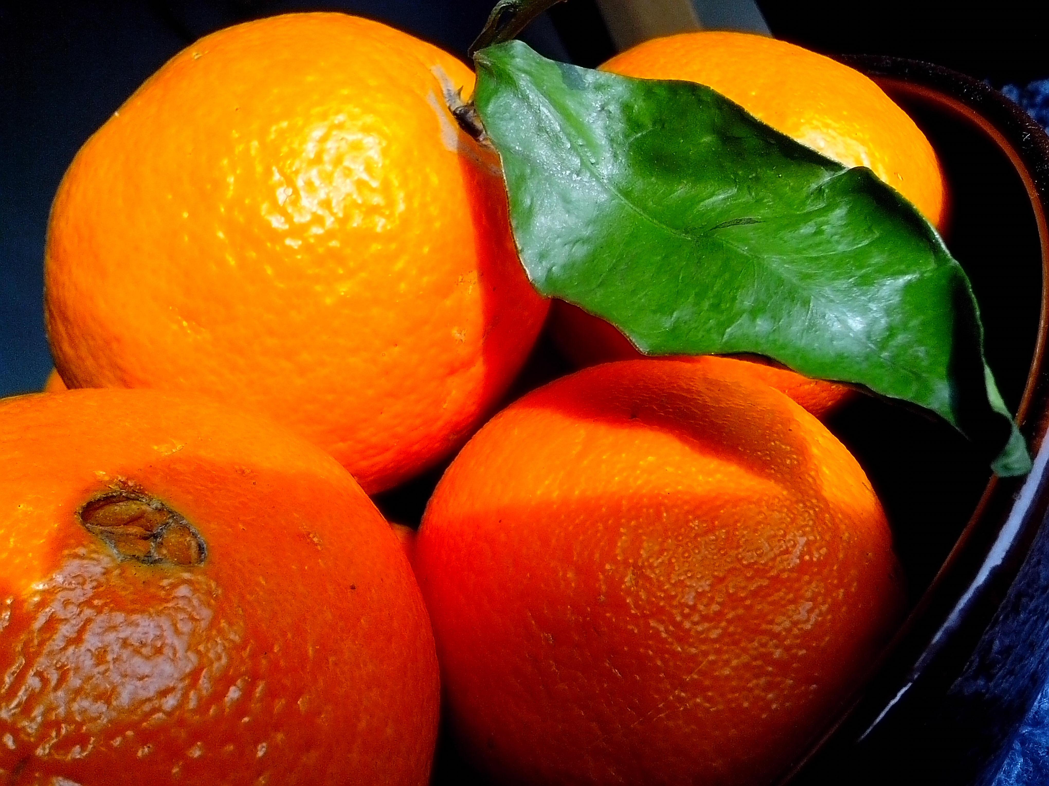 Free photograph; big, oranges, leaves, bowl