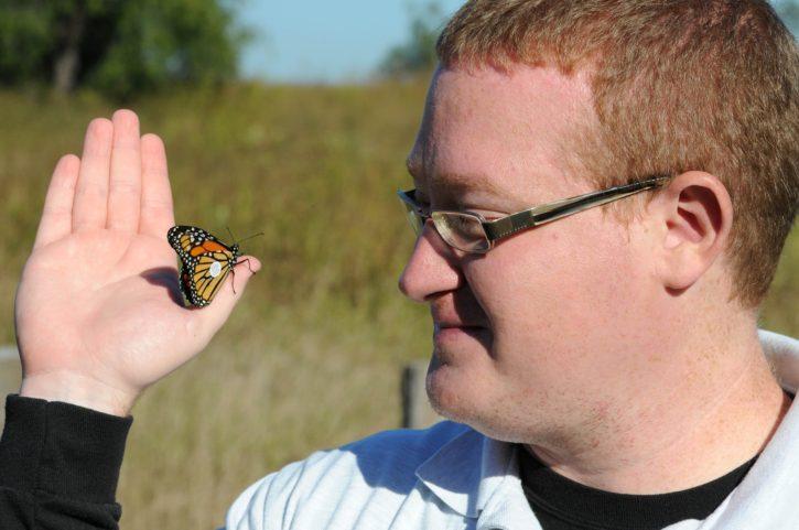 biologist, tags, Monarch, butterfly