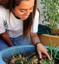 mignon, fille, le visage, la recherche, les plantes