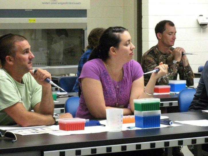 groups, conducted, wildlife, exercises, teacher, workshop