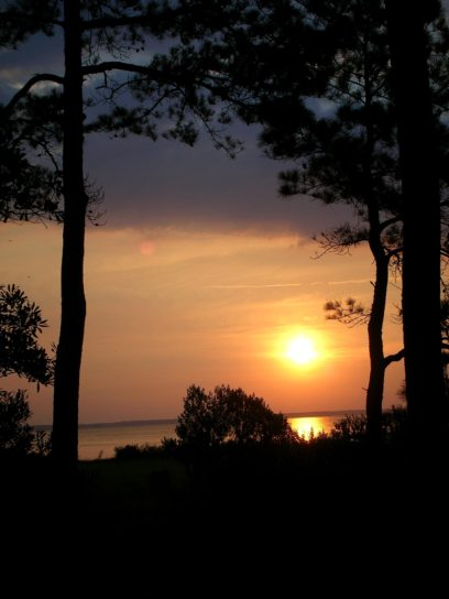 coucher du soleil, zone humide