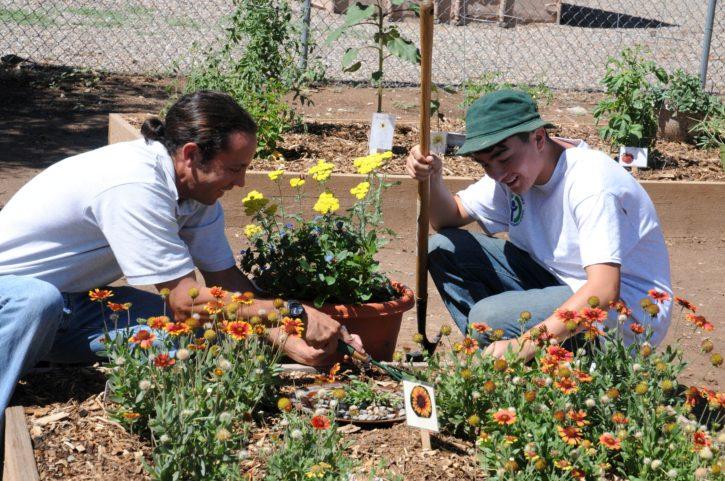 two, man, gardening, nature