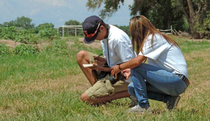 two, youth, enjoying, wildlife, watching