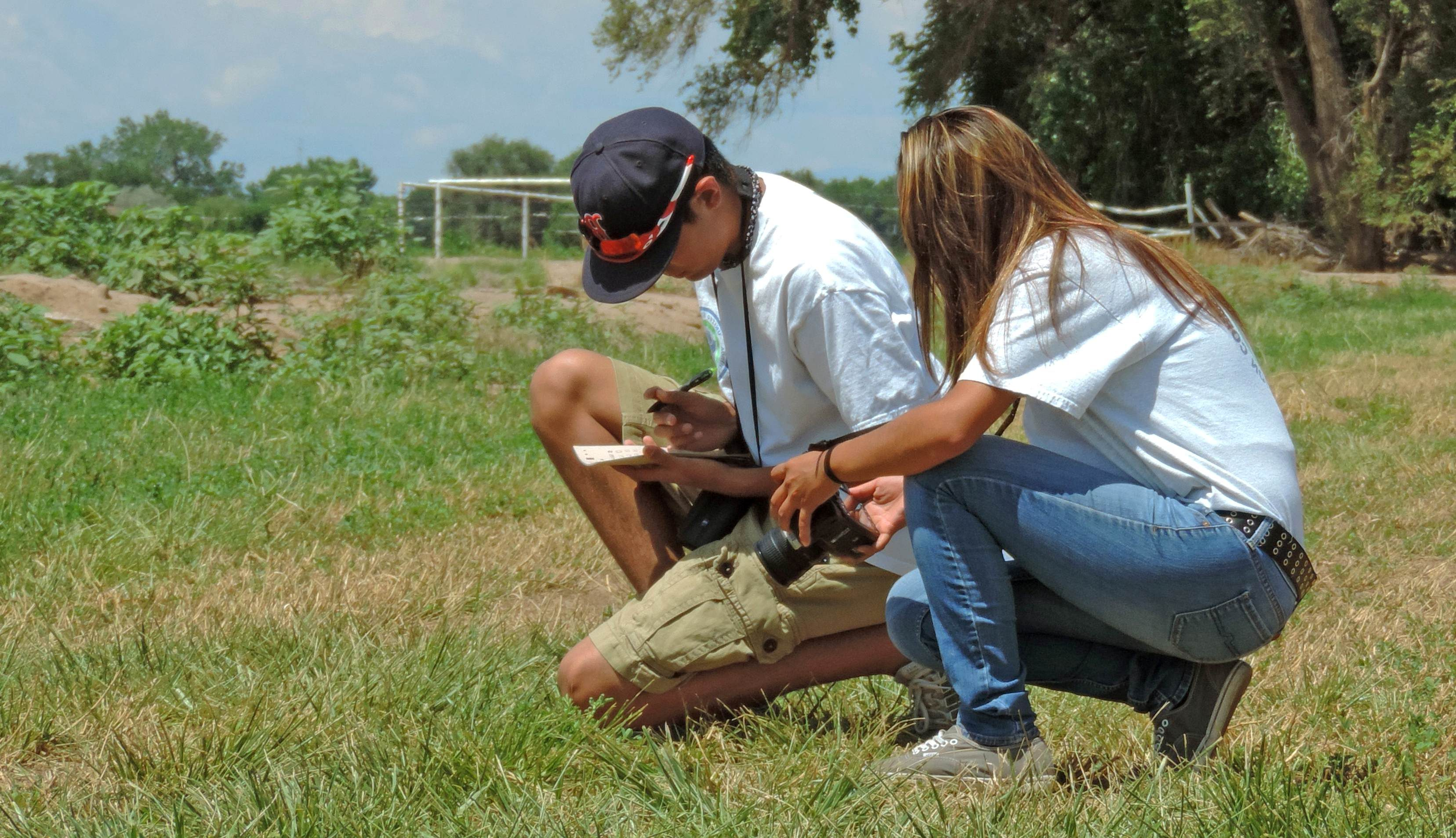 Free photograph; two, youth, enjoying, wildlife, watching