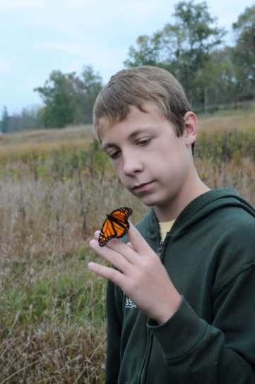 young male, holds, Monarch, butterfly, insect, finger