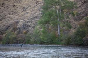 récréatif, rivière, pêche