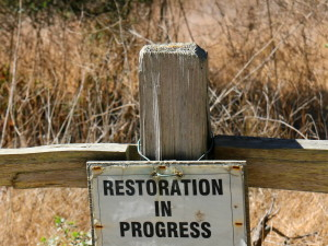 restoration, progress, sign