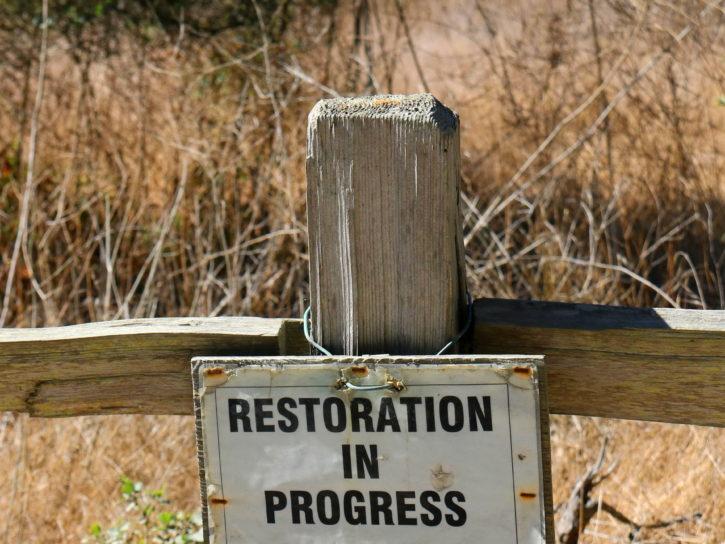 la restauration, le progrès, signe