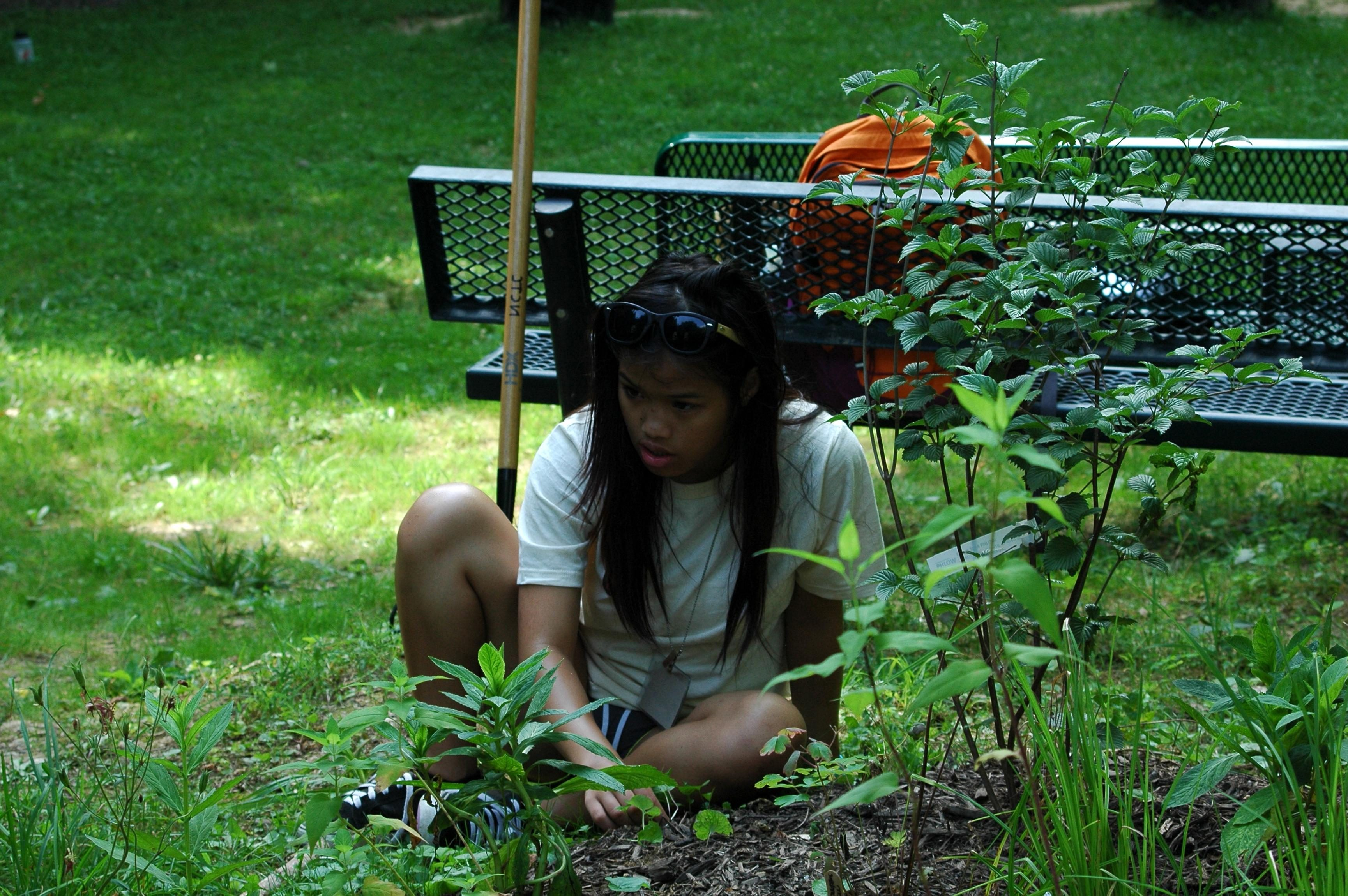 Free photograph; girl, student, volunteering, outdoor, classroom