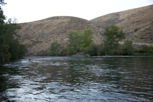 yakima, river, anglers, fishing