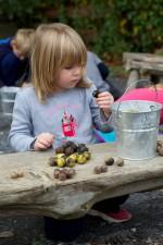mladá dívka, různé ořechy, play, ořech