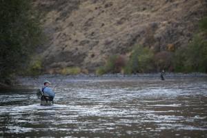pêcheurs, poissons, truite, truite arc en ciel, Yakima, rivière