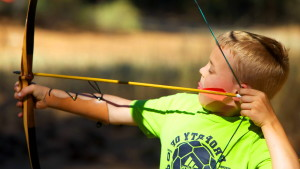 archery, sport, bow, arrow, practise