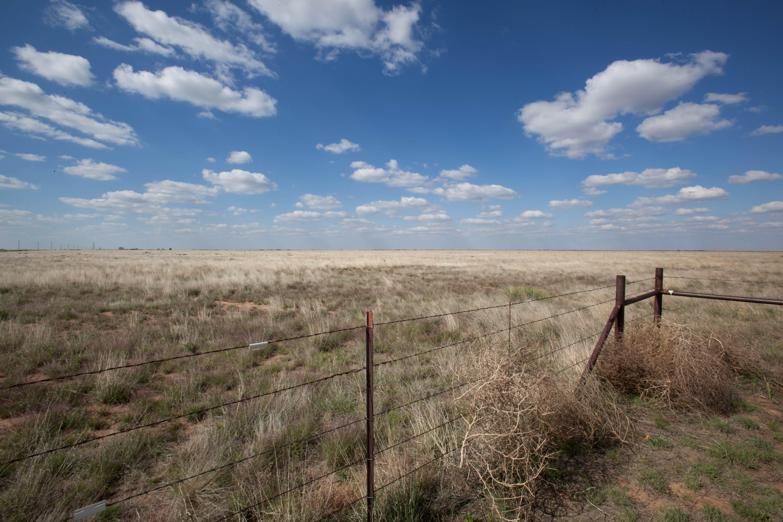 Free photograph; blue, sky, clouds, desert