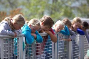 enfants, garçons, filles, clôture