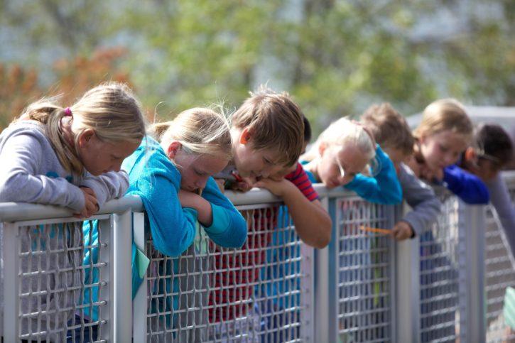 children, boys, girls, fence