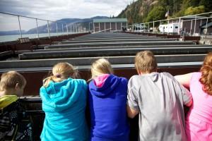 children, looking, down, water