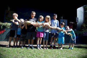 children, snake, reptile, education