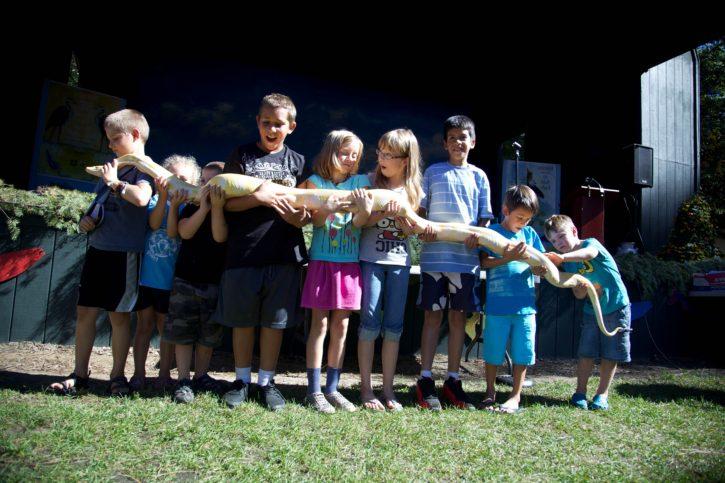 children, snake, reptile, education