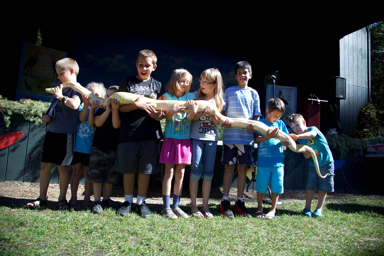 Free photograph; children, snake, reptile, education