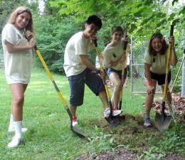 student, voluntari, de lucru