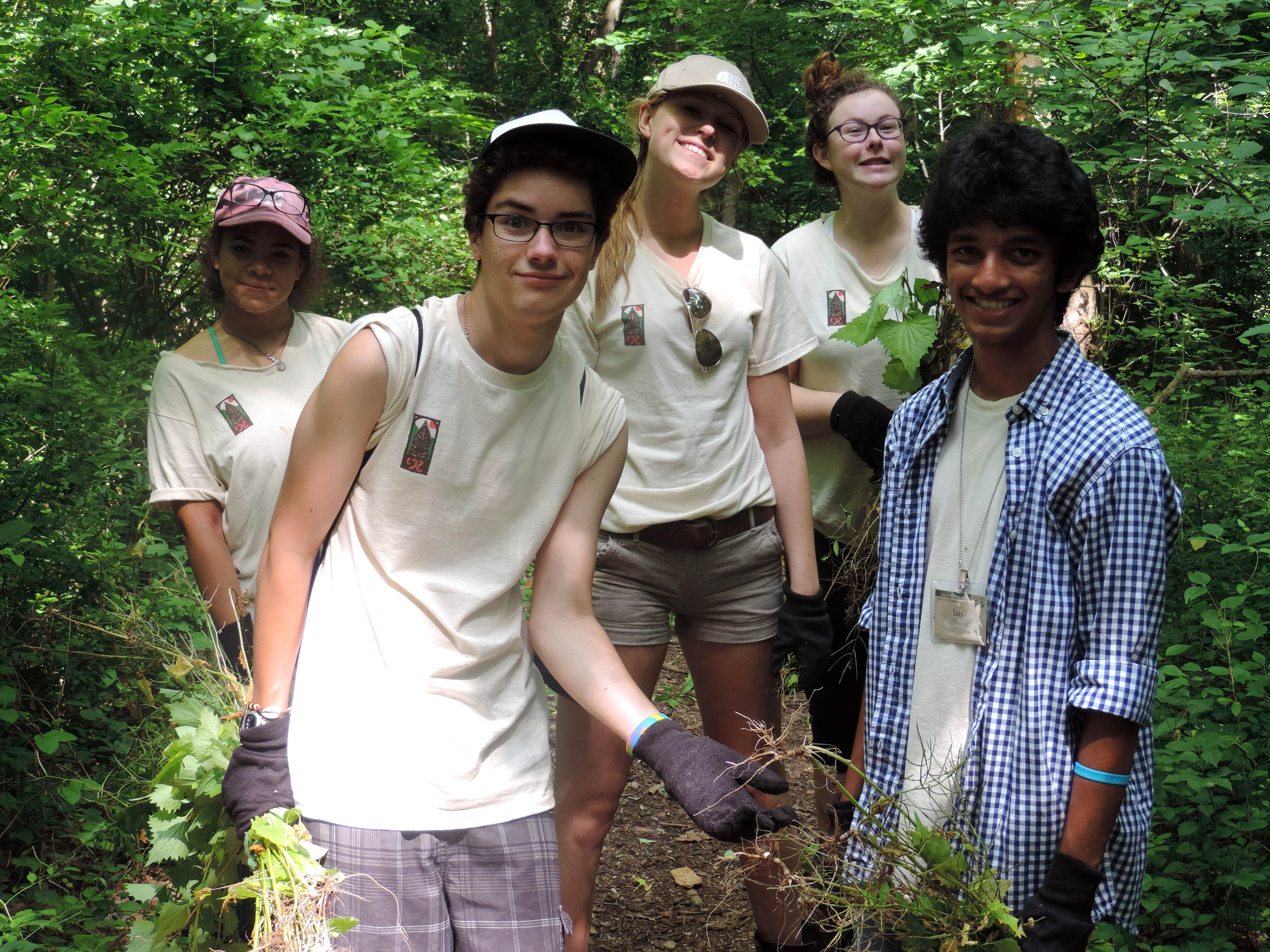 Free photograph; trail, clearing, cullison, park, student, volunteers