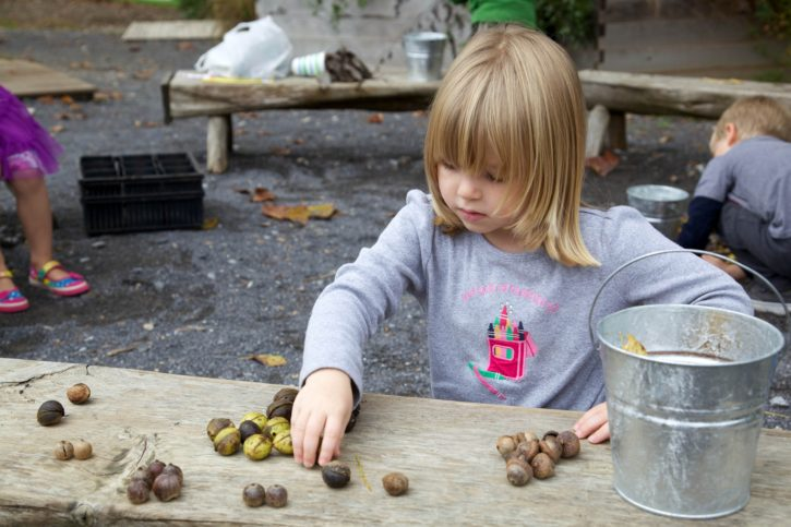 cute, girl, playing, nuts, table