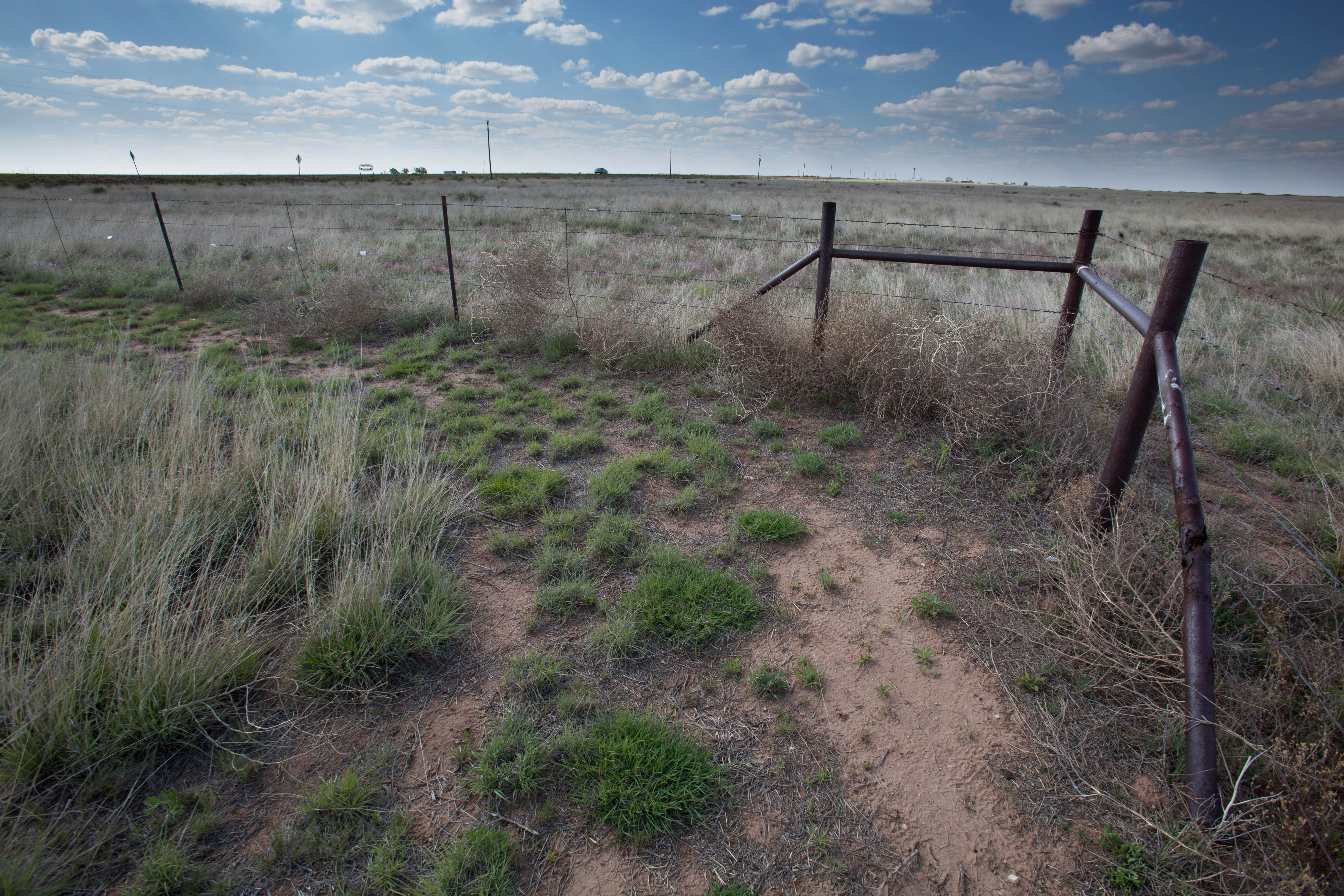 Free photograph; desert, fence, scenic, prairie, barbed, wire, sky, nature