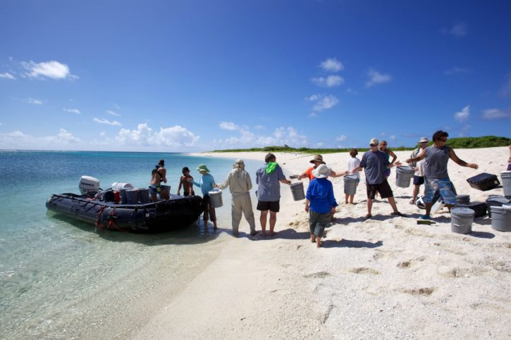 expedition, group, people, boat, summer, time, beach, coast, island