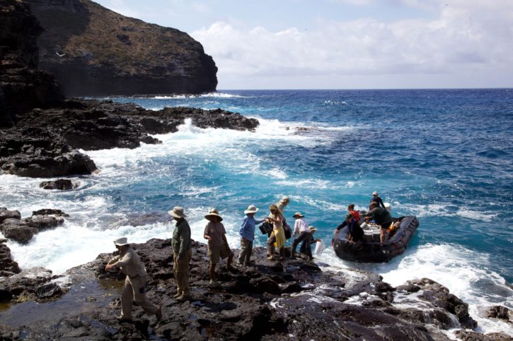 expedition, people, explore, island, shore