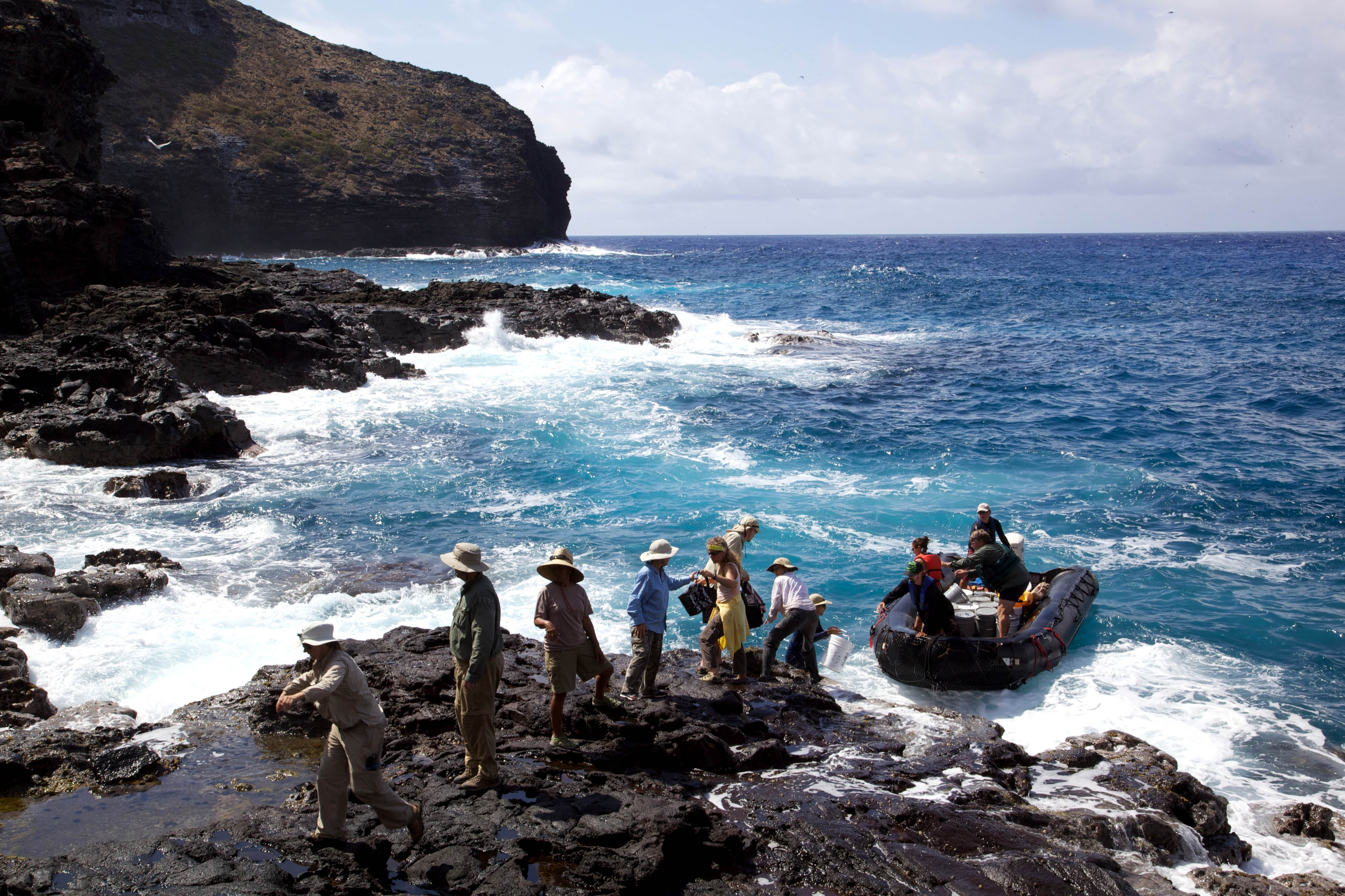 Free photograph; expedition, people, explore, island, shore