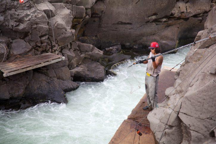 fall, Chinook, salmon, nets, traditional, fishing, Columbia, river, fishery