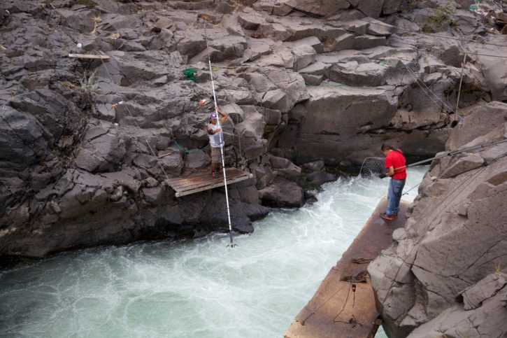 fast, stream, fishing