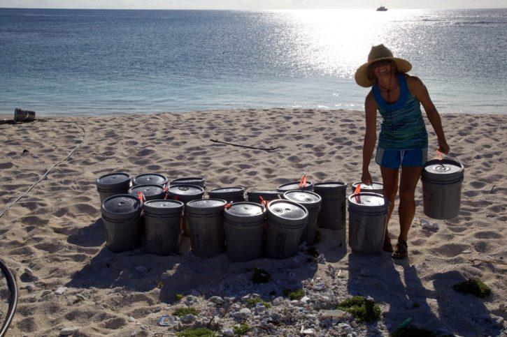 หญิง หนุ่มสาว ชายหาด ทำงาน