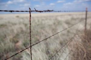 clôture, désert, fil de fer barbelé