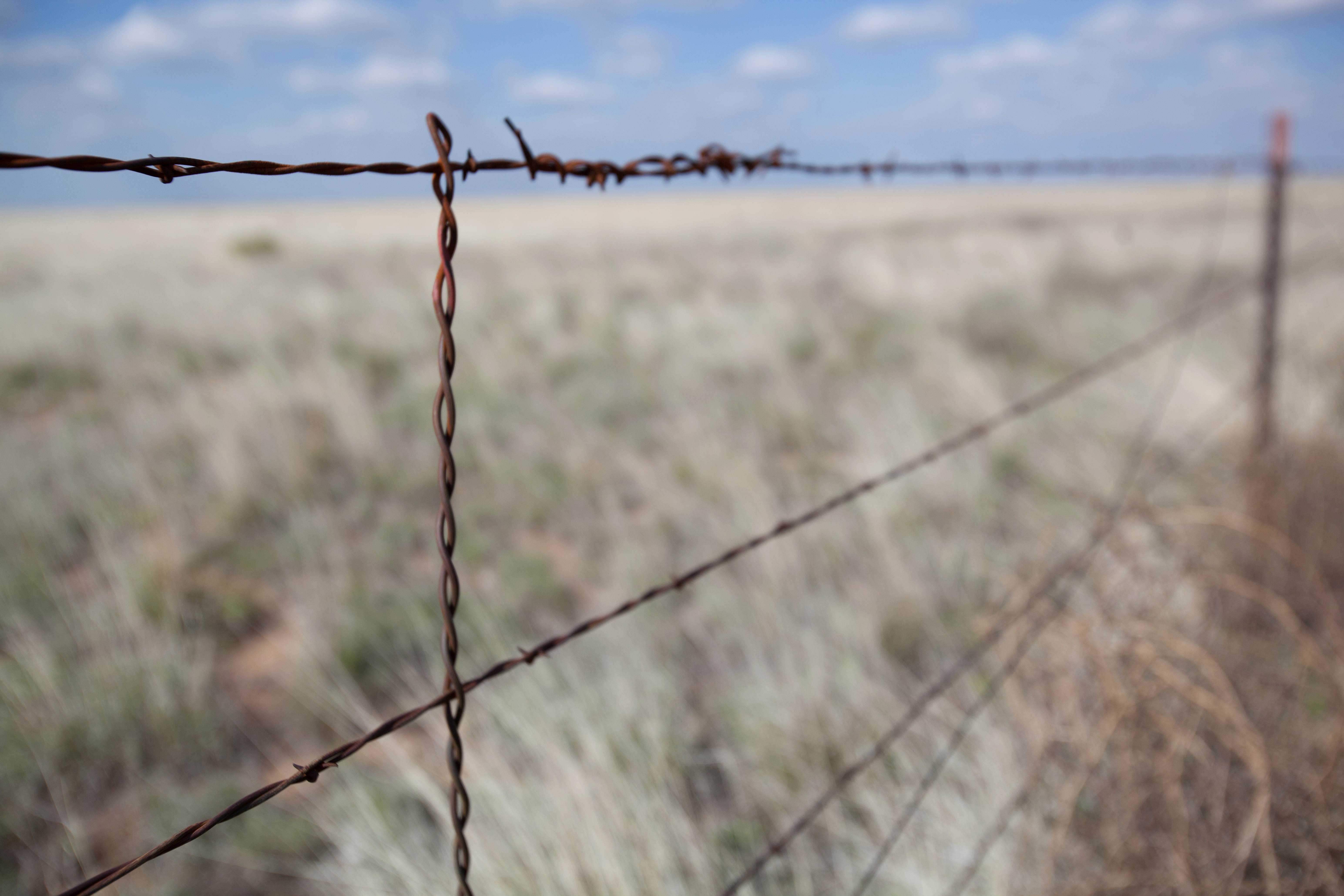 Free photograph; fence, desert, barbed, wire