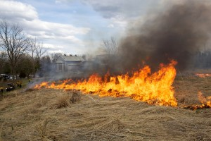 fire, burn, urban area, house, burning
