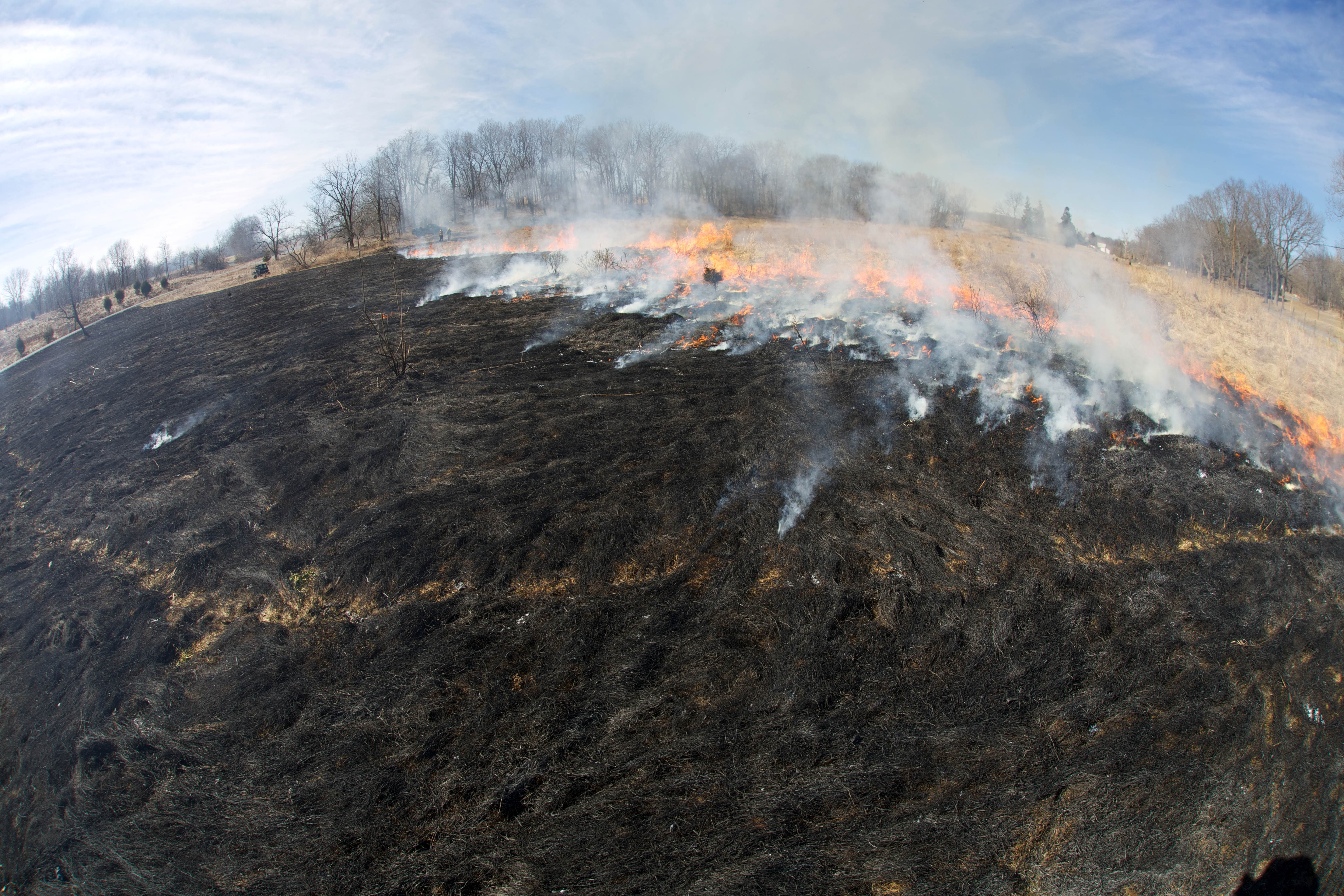 Free photograph; fire, crew, burns, fields, habitat, management