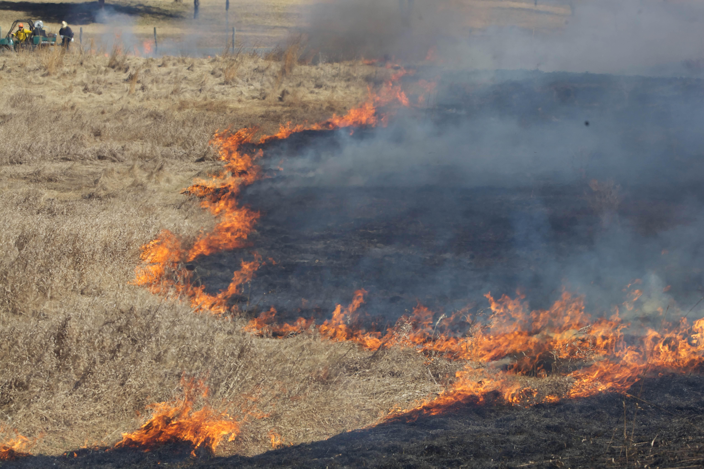 Free photograph; fire, crew, burns, fields