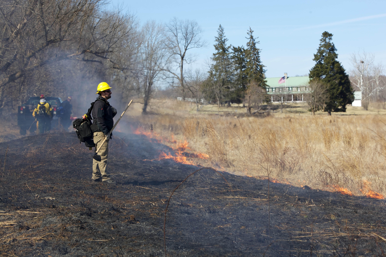 Free photograph; fire, crew, firefighter, crew, burn
