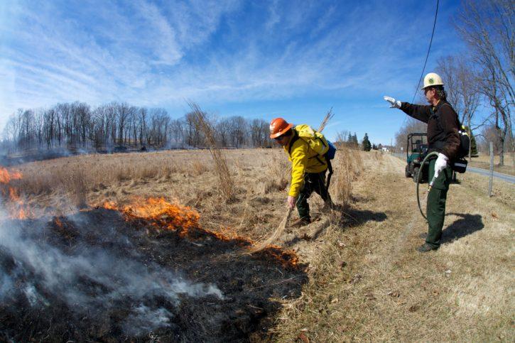 fire, crew, monitoring, prescribed, fire