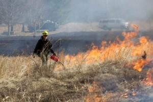 Feuerwehrmann, vorgeschrieben, brennen, hoch, Gras, Sommer