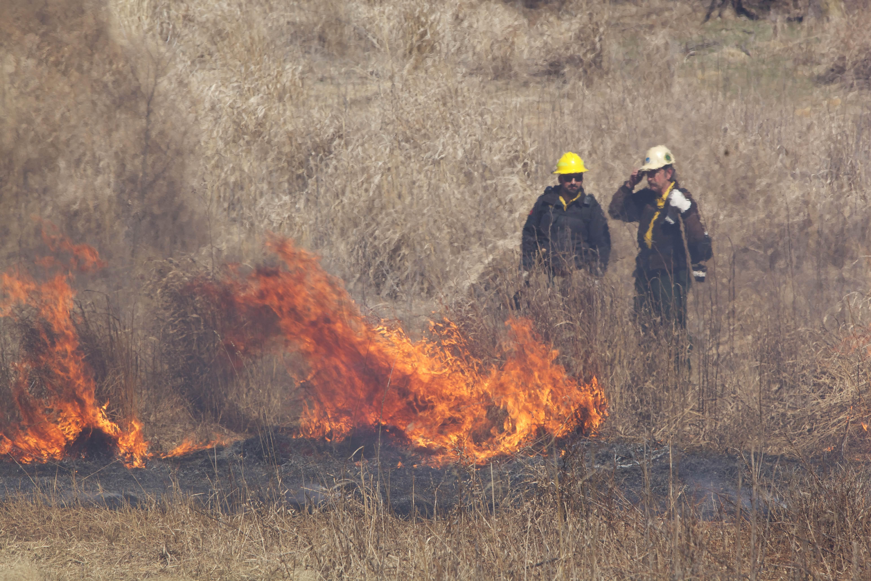 Free photograph; firefighters, crew, fire, hill, nature, burn, grass