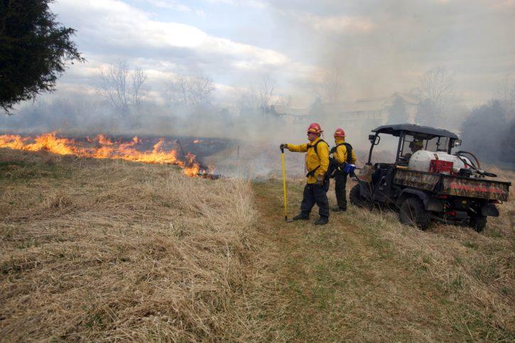 firefighters, near, fire