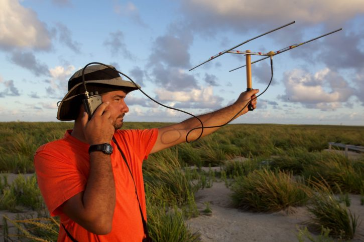 man, using, radio, telemetry, locate