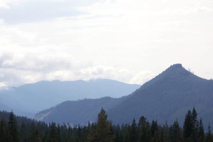 mountain, forest, dust, fog, scenic, hills